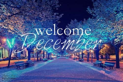 Image result for picture of december